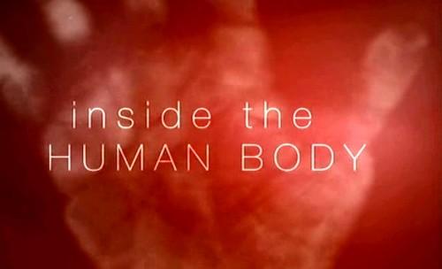 Тайны человеческого тела | Смотреть онлайн / Скачать (документальные фильмы)(медицина)(анатомия)