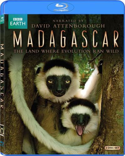 BBC:Мадагаскар. Земля, где эволюция шла своим путём | Смотреть онлайн / Скачать (документальные фильмы)(животный мир)(BBC)